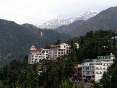 Дхармсала, Резиденция Далай Ламы