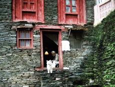 Поселок  Бхагсу