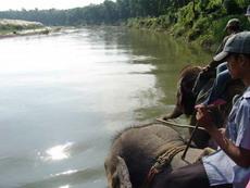 Сафари  на слонах в Королевском Национальном Парке Читван