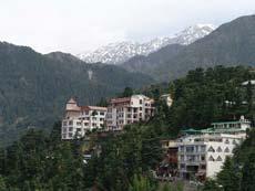 Дхармсала,  Резиденции Его Святейшества Далай Ламы