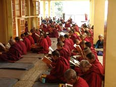Буддийские монахи  на службе в Храме Калачакры, Дхармсала