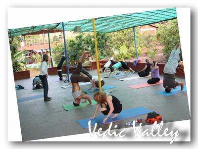 Йога семинары в Гоа